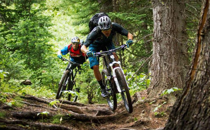 Cómo iniciarte en el ciclismo de montaña
